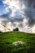 2016-4467 Ehlen Landscape